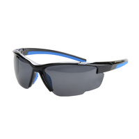 Striker SS2 Sunglasses - BLACK/BLUE WITH SMOKE LENS